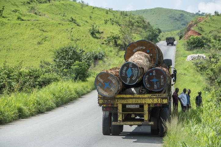 Transport Of Huge Tropical Timber Logs, Congo