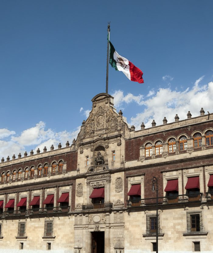 Palacio Nacional (national Palace) Flag, Mexico City