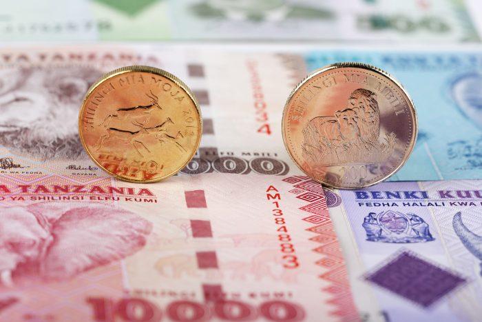 Tanzanian Schilling Coins