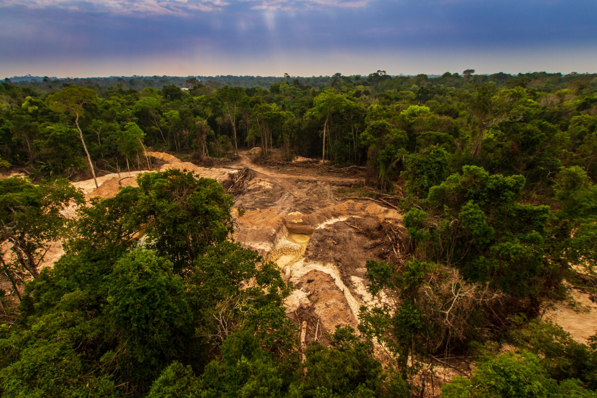 Illegal Mining Causes Deforestation And River Pollution In The Amazon Rainforest Near Menkragnoti Indigenous Land. Pará, Brazil